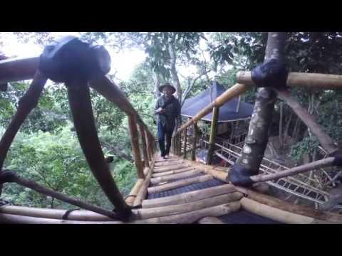 Rumah Pohon Bali Desa Temega Karangasem Wisata Youtube Kab