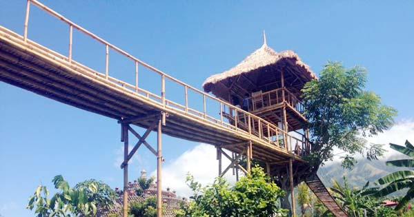 Rumah Pohon Batu Dawa Karangasem Kab