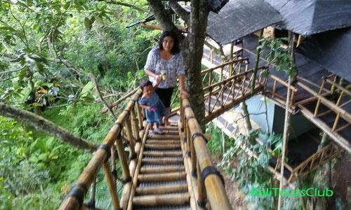 Rumah Pohon Desa Temega Kabupaten Karangasem Bali Kab