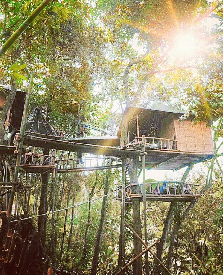 Rumah Pohon Karangasem Bali Tempat Asik Kab