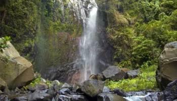 Rumah Pohon Karangasem Peta Lokasi Tiket Masuk Daya Tarik Air