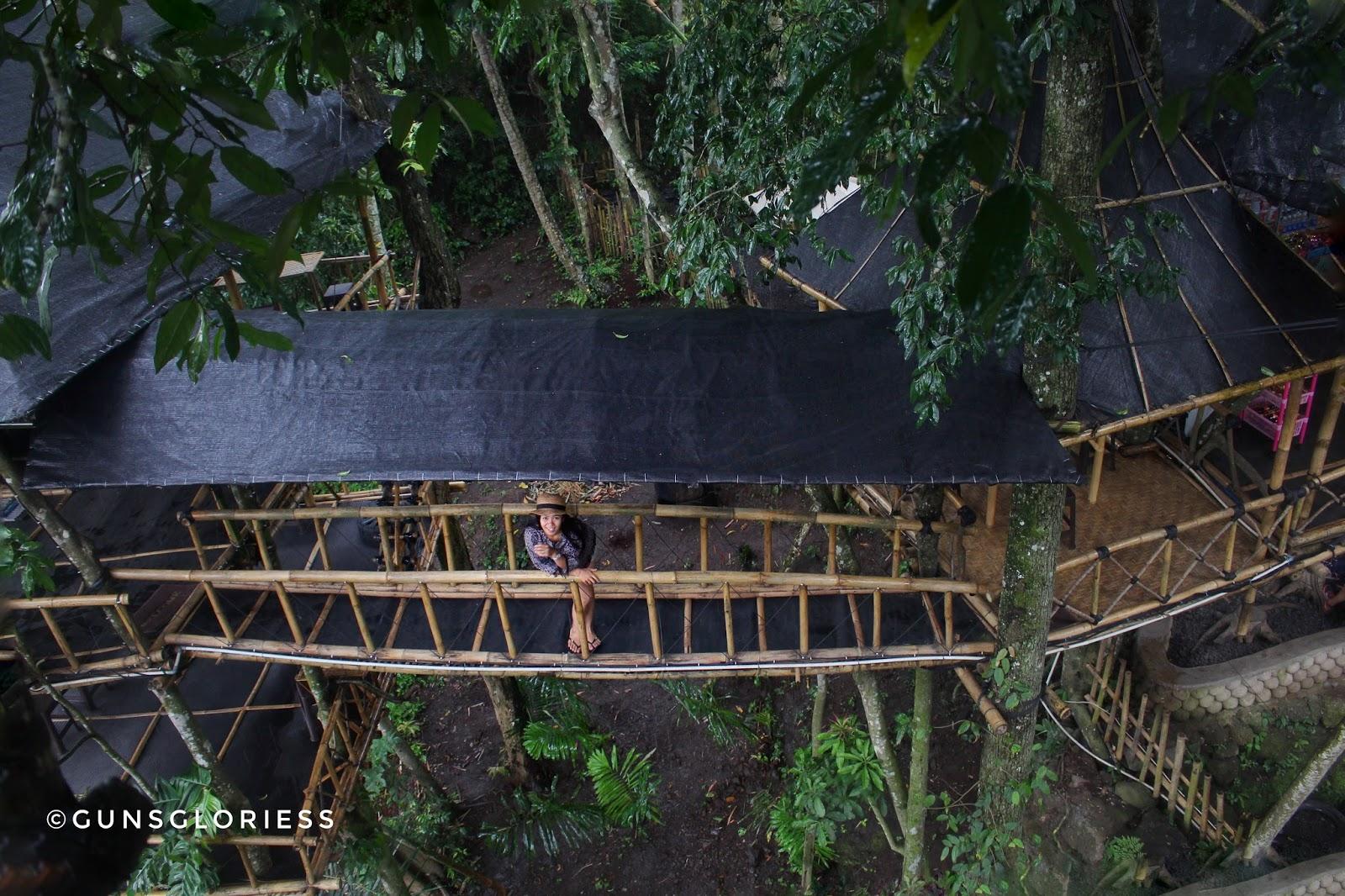 Rumah Pohon Temega Tempat Menarik Bali Karangasem Kab