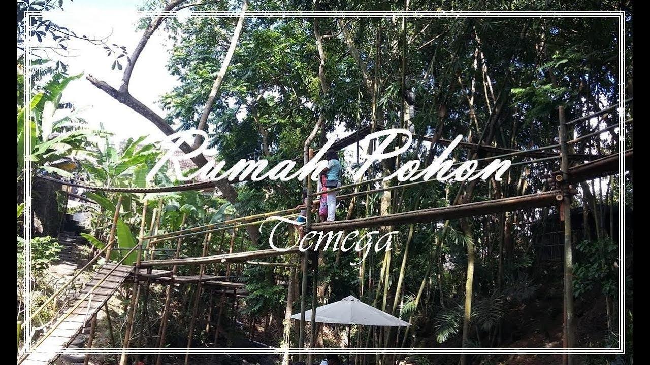 Rumah Pohon Temega Tempat Wisata Wajib Dikunjungi Youtube Karangasem Kab