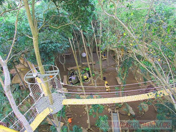 Tempat Wisata Rumah Pohon Bukit Lemped Karangasem Kab