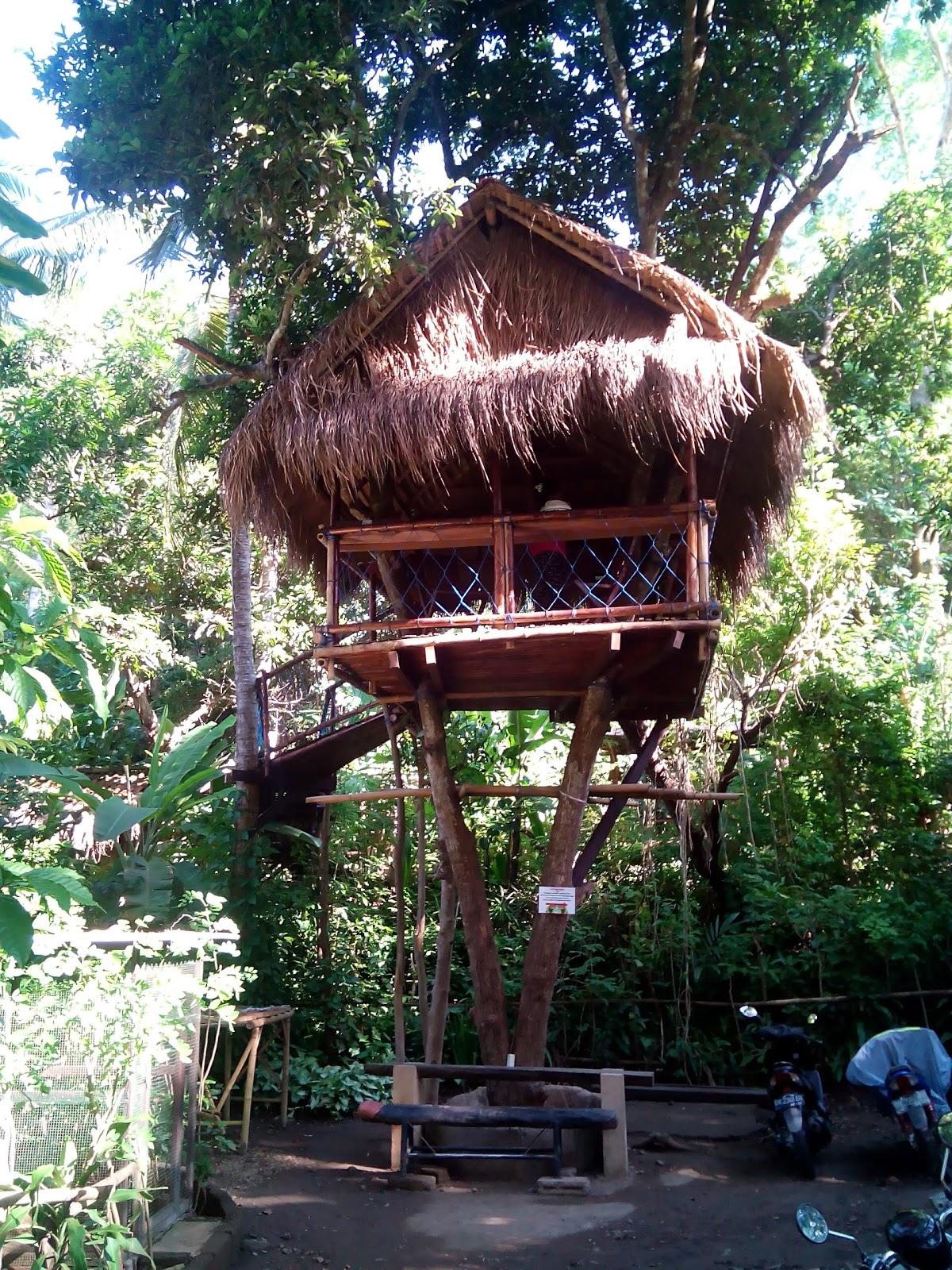 Wedding Taru Agro Rumah Pohon Karangasem Berlokasi Banjar Bengkel Antiga