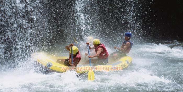 Ayung Rafting Bali Booking 081236 124 950 River Arung Jeram