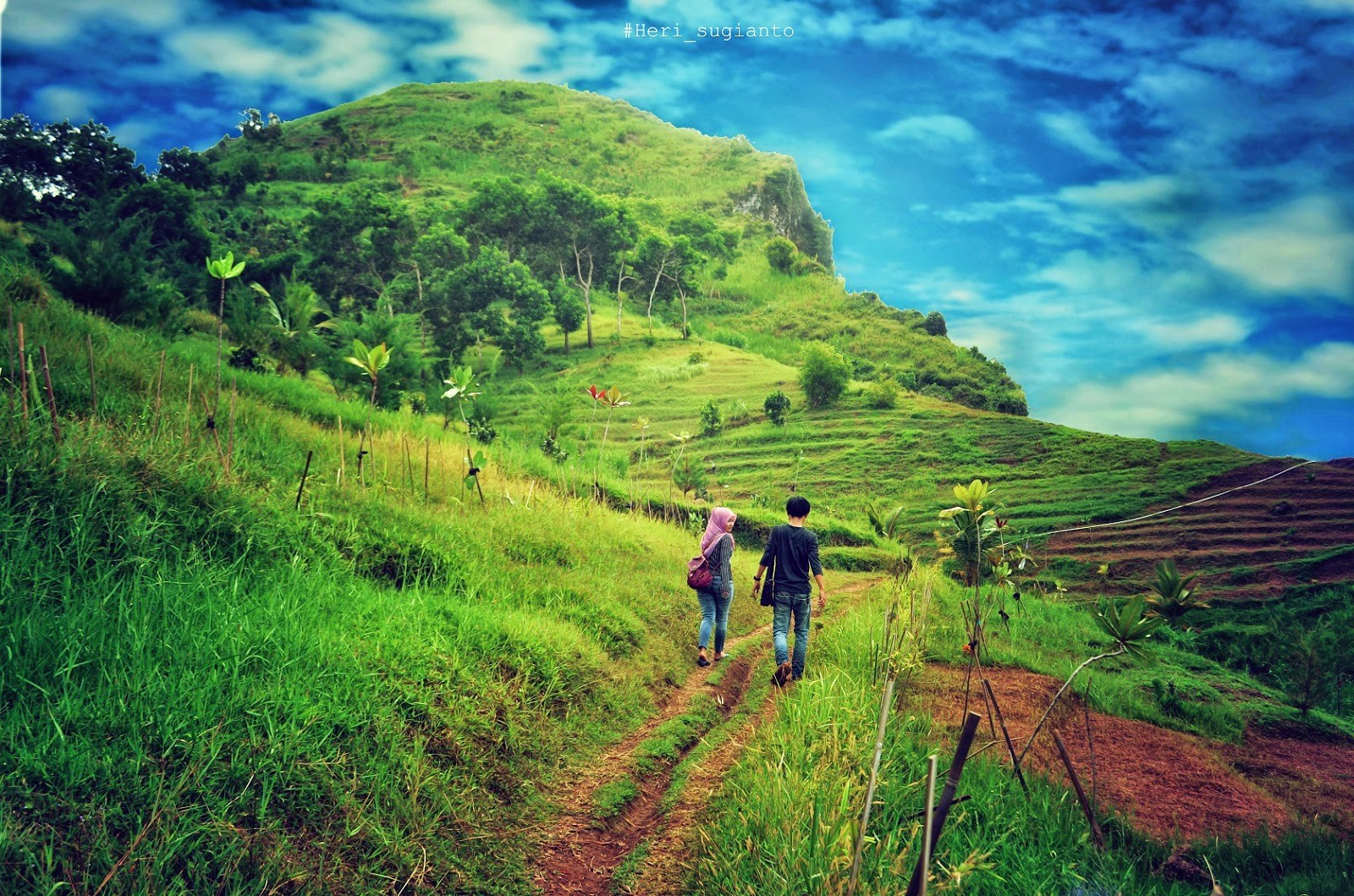 Sewa Bus Parawisata Destinasi Kabupaten Kebumen Besar Full Arung Jeram