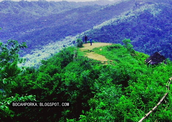 Jalan Bukit Langit Dusun Kembangabang Desa Giripurno Kita Berangkat Hari
