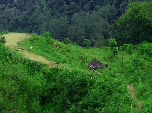 Pesona Keindahan Bukit Langit Kebumen Wisata Atas Awan Kab