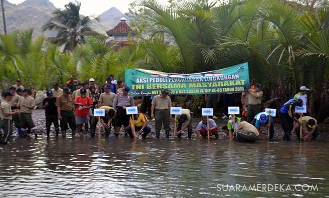 2 500 Bakau Ditanam Pantai Logending Lintas Kebumen Ayah Sedikitnya