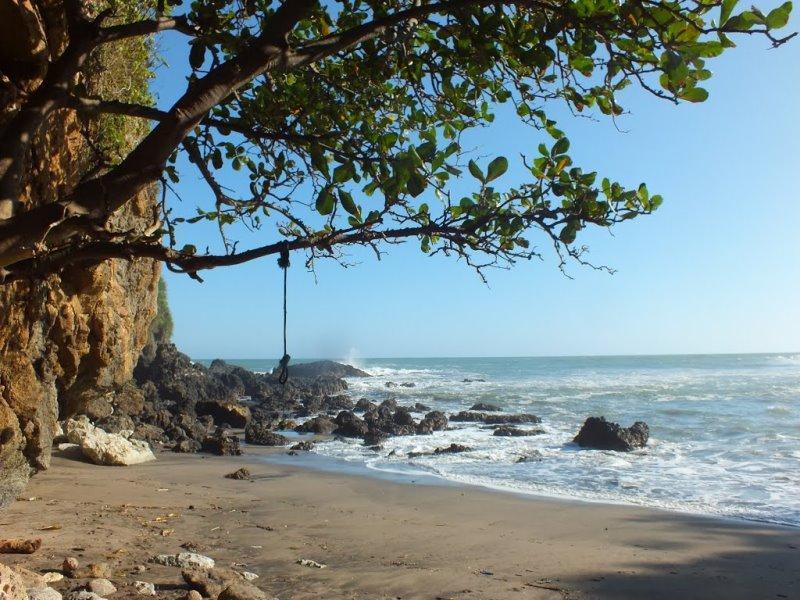 5 Destinasi Wisata Alam Kebumen Tips Pantai Gebyuran Hutan Mangrove
