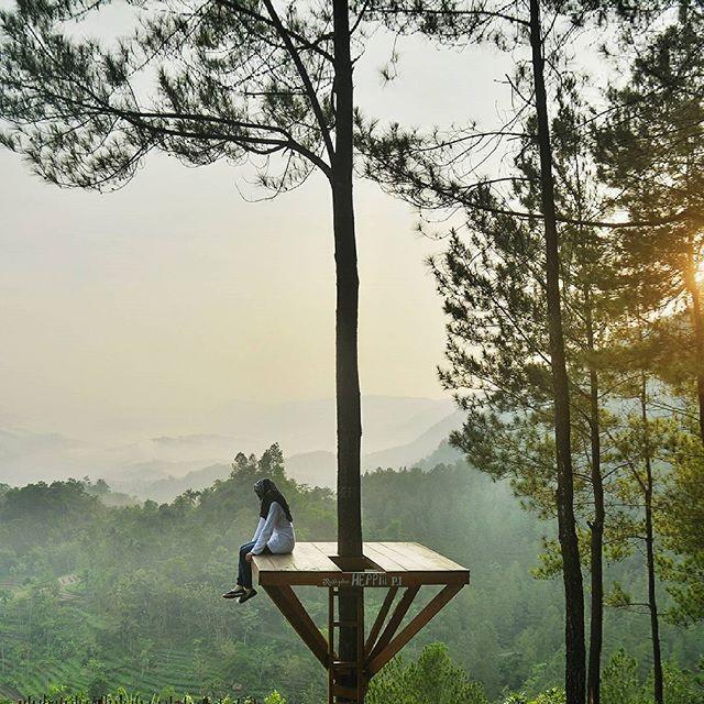9 Tempat Wisata Kebumen Keren Abis Klikhotel Bukit Pentulu Indah
