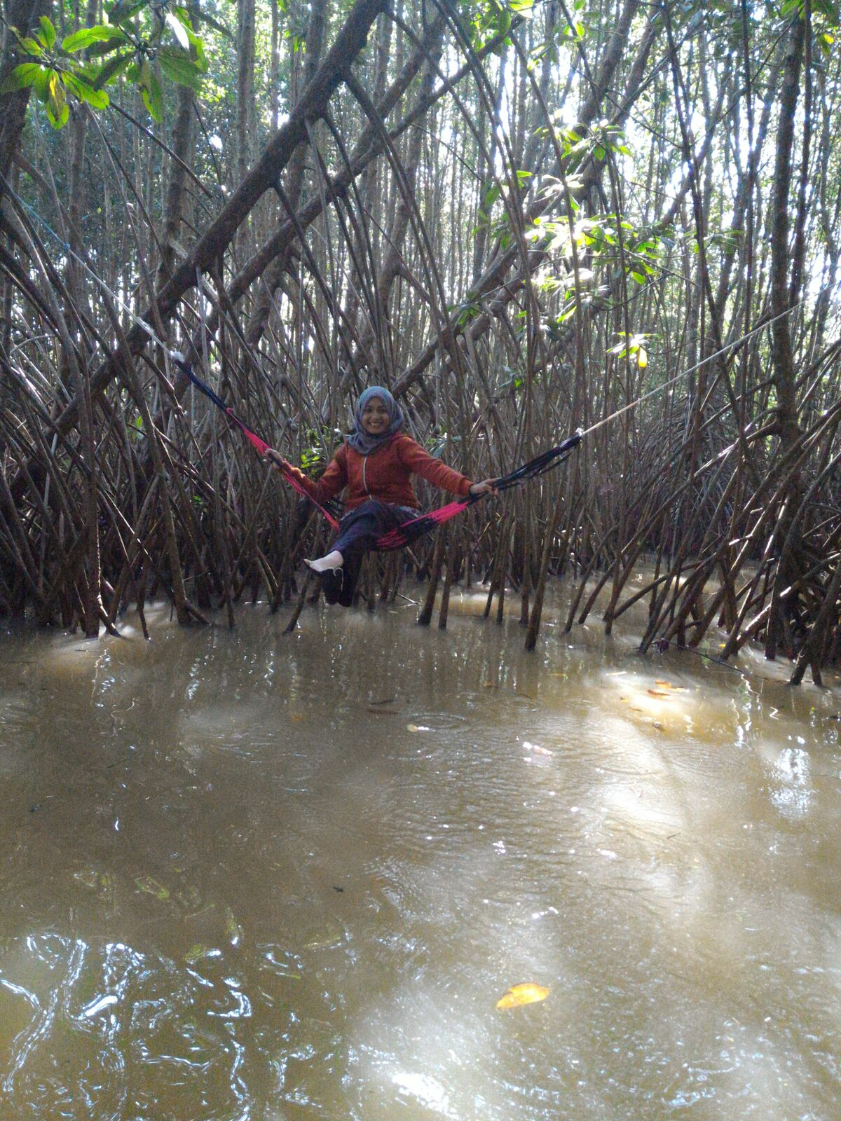 Asyiknya Berwisata Edukasi Kawasan Mangrove Ayah Berita Kebumen Jangan Lupa