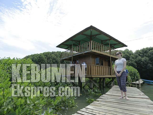 Hutan Mangrove Bakal Dikelola Pemda Kebumen Ekspres Tahu Kebumenekspres Kisruh