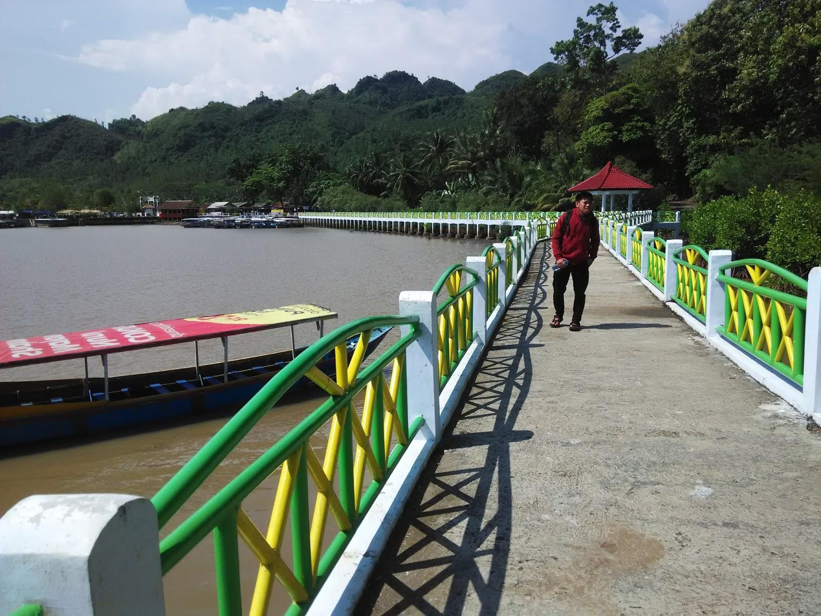 Hutan Mangrove Pantai Ayah Kebumen Adem Charis Fuadi Jembatan Khas
