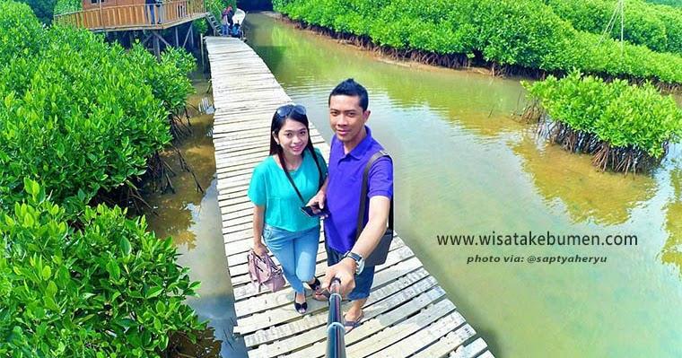 Keren Hutan Mangrove Ayah Kebumen Hijau Asri Wisata Logending Kab