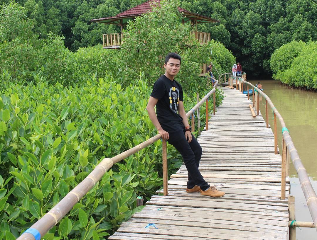 Pantai Ayah Logending Kebumen Jawa Tengah Garispantai Hutan Mangrove Kab