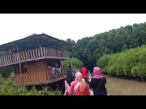 Tarif Tiket Masuk Obyek Wisata Hutan Mangrove Logending Ayah Kebumen