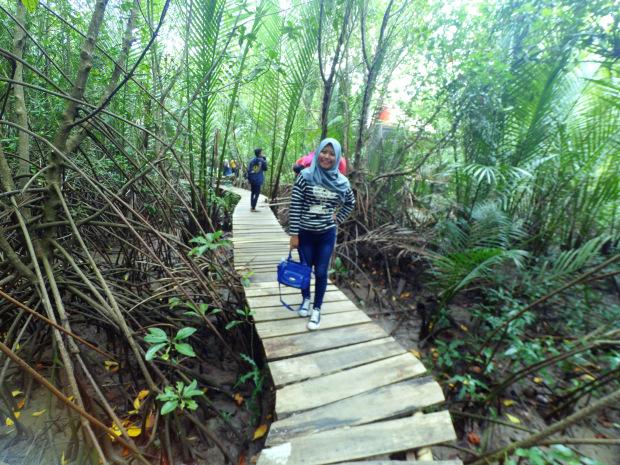Telusur Hutan Mangrove Jembatan Bambu Kebumen Wisata Pengunjung Menelusuri Keindahan