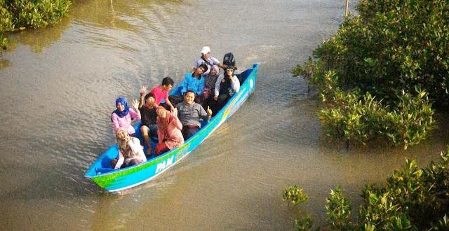 Wisata Edukasi Dikawasan Mangrove Ayah Desa Seliling Hutan Logending Kab