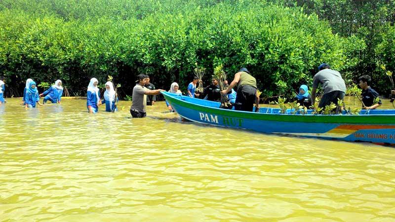 Wisata Mangrove Dikeluhkan Wisatawan Radar Banyumas Hutan Logending Kab Kebumen