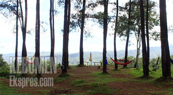 Brujul Adventure Park Bap Tawarkan Wisata Alam Petualangan Jemur Kab