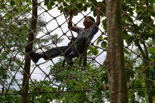 Juni Aminudin Wisata Terbaru Kebumen Jemur Adventure Park Double Ropes