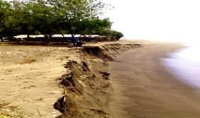Hotel Sekitar Daerah Pantai Bopong Kebumen Klikhotel Gebyuran Kab