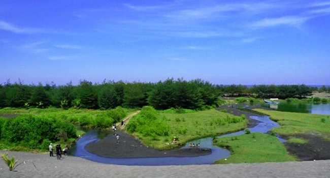 Bermacam Macam Keindahan Pantai Lembupurwo Kebumen Jawa Tengah Kab