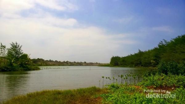Terpesona Laguna Indah Pantai Lembupurwo Kebumen Dihiasi Mangrove Gumuk Pasir