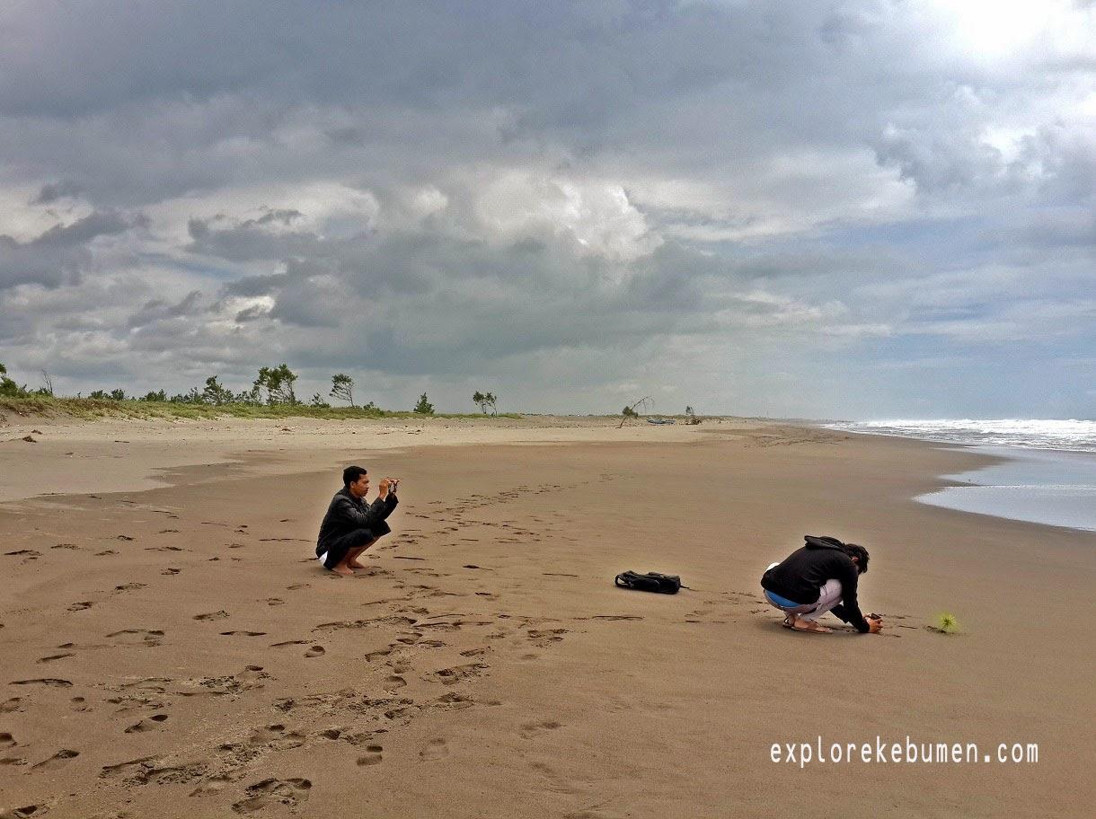 Pantai Desa Tegalretno Kebumen Explore Pasir Putih Petanahan Kab