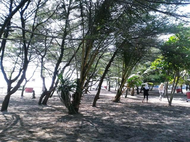 Pantai Petanahan Kebumen Jejak Olipe Kab