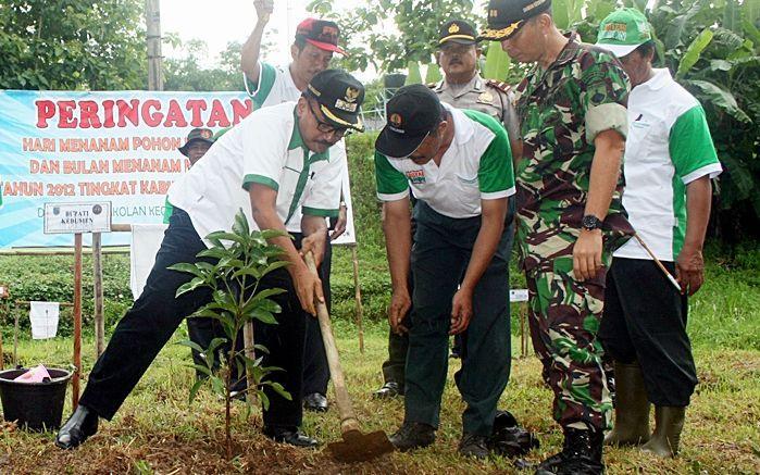 Produksi Kayu Rakyat Kebumen Rp 75 Berita Line Www Beritakebumen