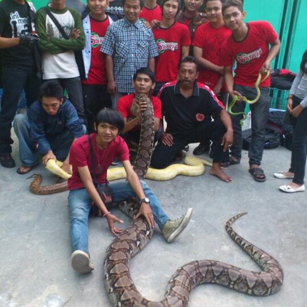 Taman Reptil Adiluhur Kebumen Jawa Tengah Kab