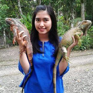 Taman Reptil Adiluhur Tamanreptiladiluhur Instagram Photos Videos Instapopim Kab Kebumen