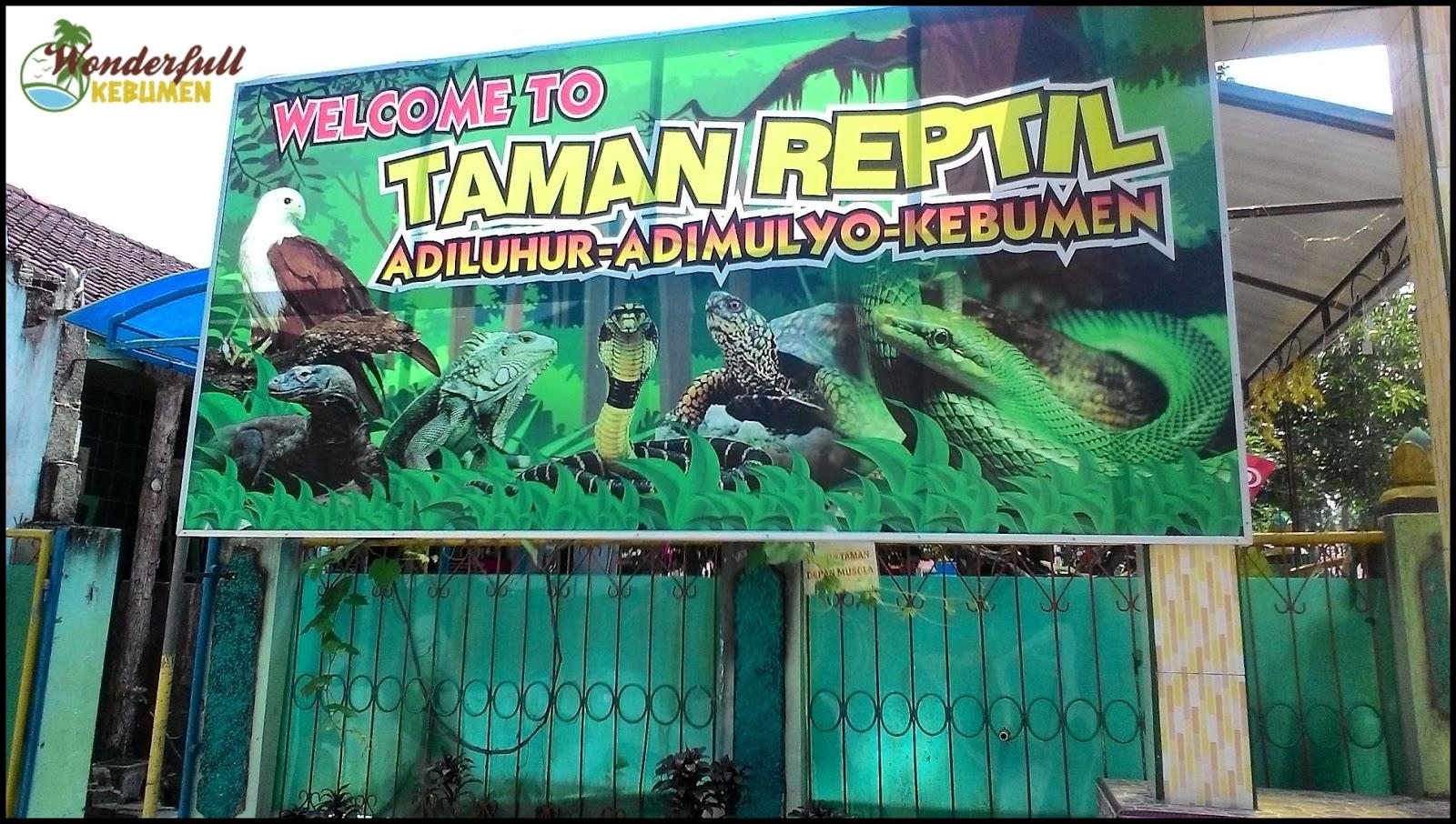 Taman Reptil Adiluhur Tara Adimulyo Kebumen Sensasi Salah Satu Wisata