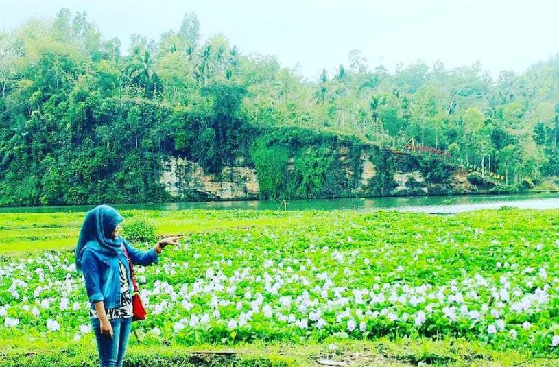 14 Tempat Wisata Hits Kebumen Rekomended Dikunjungi Jembangan Alam Kab