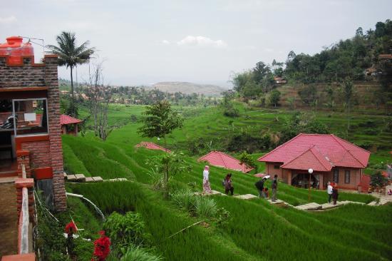 Villa Picture Wisata Alam Jembangan Kebumen Tripadvisor Kab