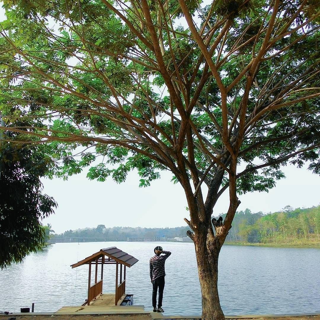 Wisata Alam Jembangan Kebumen Jawa Tengah Thisisindonesia Photo Ilham Maullana