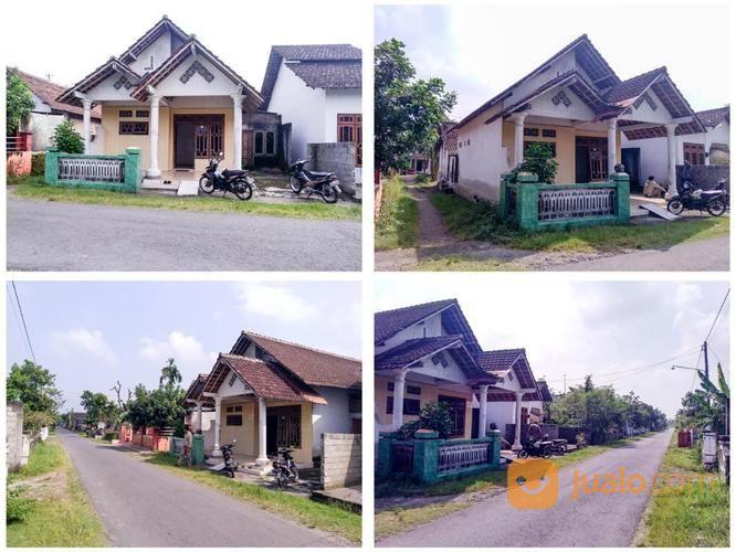 Rumah 128 M2 Mangunrejo Ngadiluwih Kabupaten Kediri Kab Alun