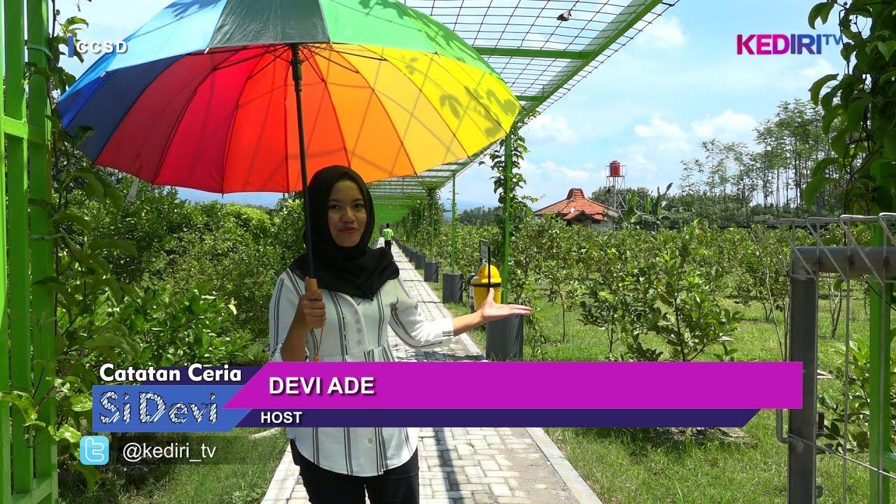 Istana Jambu Tempat Agrowisata Kediri Youtube Kab