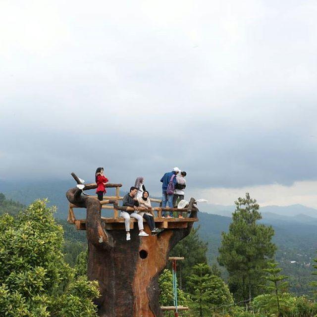 Lokasi Harga Tiket Masuk Bukit Gandrung Tanggulasi Medowo Kediri Spot
