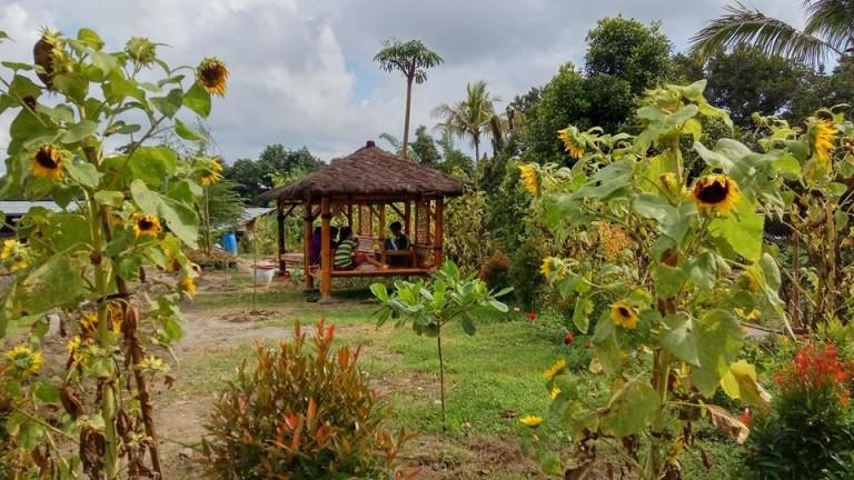 Pengembangan Wisata Kampoeng Anggrek Pt Sumber Sari Petung Kampoenganggrek Taman