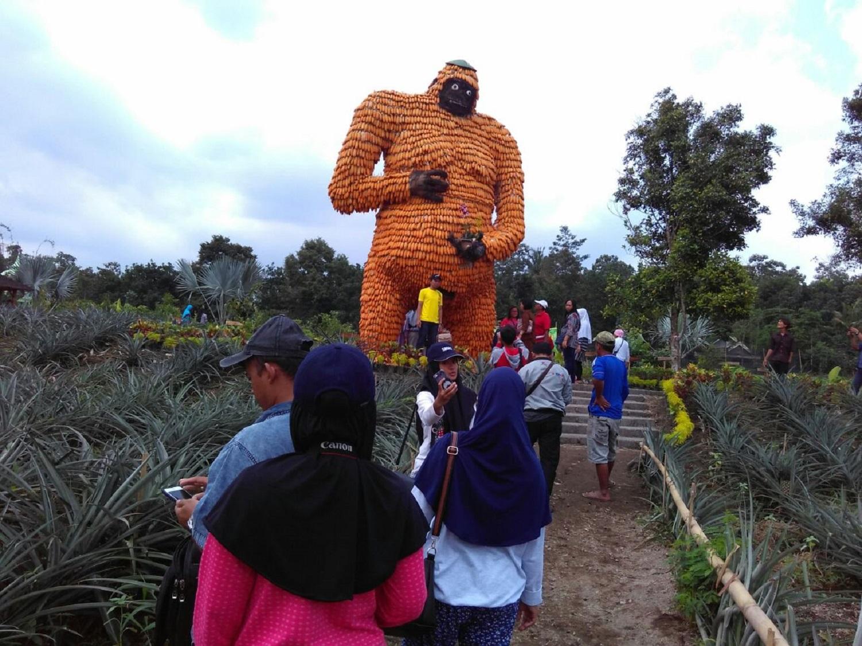 Info Wisata Kampung Anggrek Kediri Jatim Kelud Pedia Kampoeng Udara
