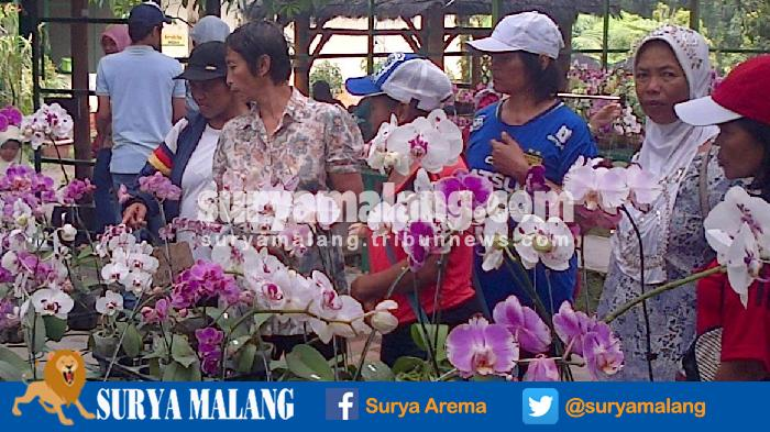 Kampung Anggrek Lereng Gunung Kelud Tak Sebatas Spot Selfie Tapi