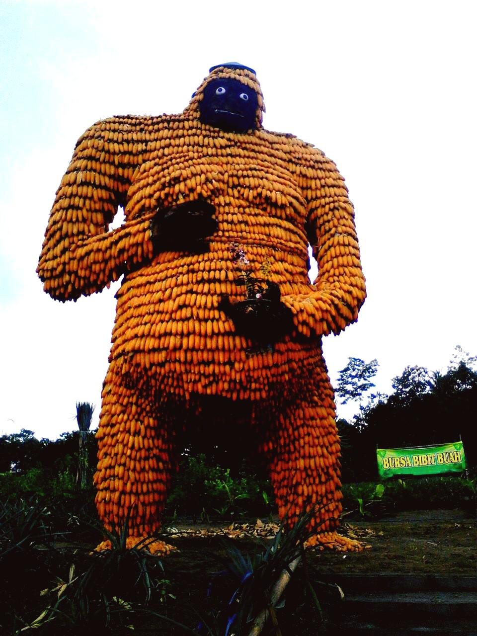 Kampung Anggrek Wisata Kekinian Kediri Yaol Brewok Patung Gorilla Kab