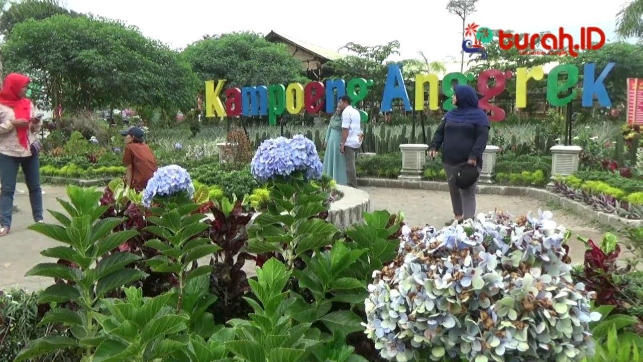 Serunya Tour Keliling Kampung Anggrek Lereng Gunung Kelud Kediri Kab