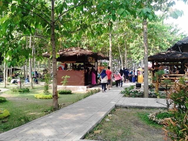 12 Tempat Wisata Kediri Jawa Timur Patut Dikunjungi Bukit Dhoho