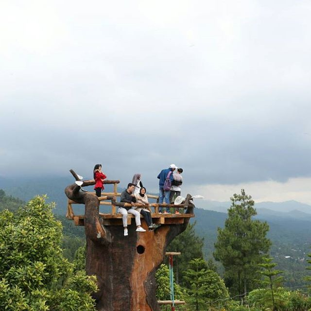 Alamat Harga Tiket Masuk Bukit Gandrung Tanggulasi Kediri Destinasi Wisata