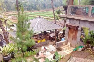 Desa Wisata Sumber Podang Semen Kediri Jawa Timur Wow Cafe